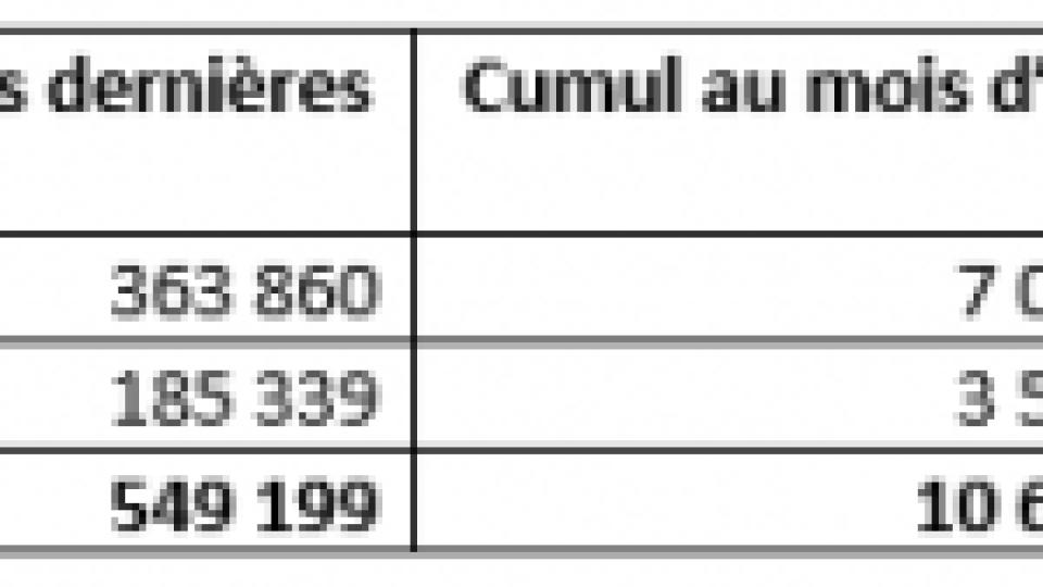 Vaccination contre la Covid en France : au 30 avril 2021, près de 22 032 000 injections ont été réalisées