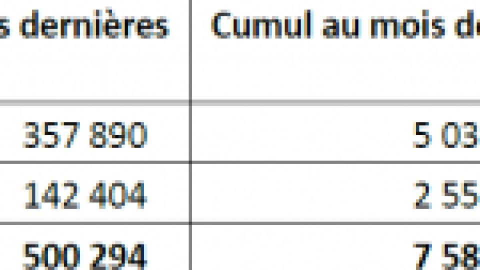 Vaccination contre la Covid en France : au 17 mai 2021, plus de 29 600 000 injections ont été réalisées