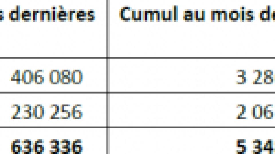Vaccination contre la Covid en France : au 12 mai 2021, plus de 27 000 000 injections ont été réalisées